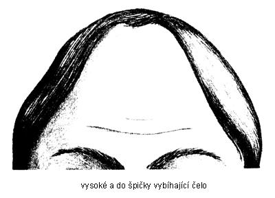 vysok%C3%A9 %C4%8Delo s - Pět nejčastějších tvarů čela odkrývá osobnost - 2