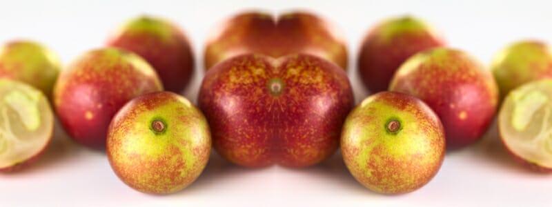 230142901524447455bc3cb601865491 - Camu Camu aneb Vitamin C na desátou