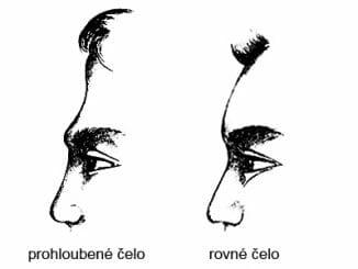 60c3968c304d4642e130d0fda8d2a5d1 326x245 - Osobnost se pozná i podle tvaru čela z profilu