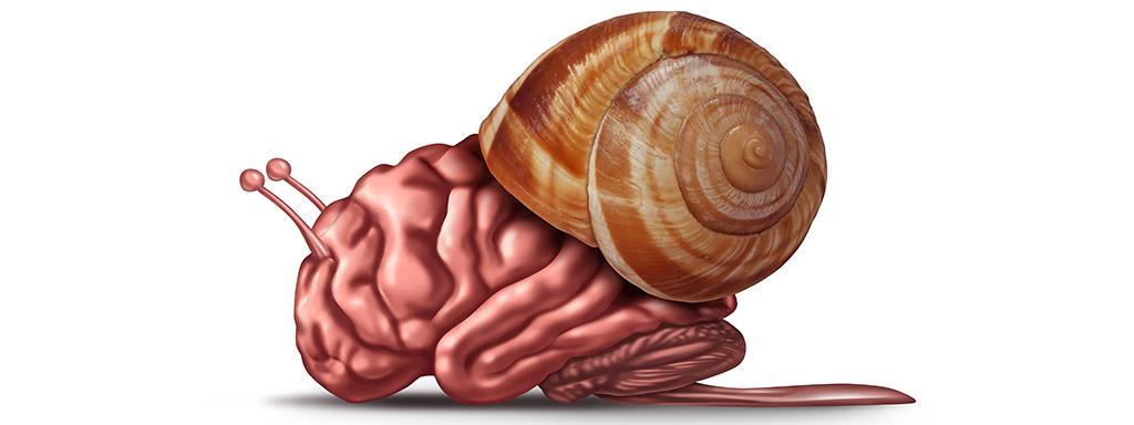 Sedm způsobů, jak zrychlit mysl a zvýšit IQ.