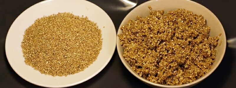 a728ab5eec6f0229f2b44f4b11fdfe0c - Proč je má quinoa hořká a nevábně voní?