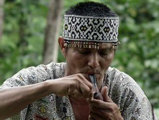 5d2d98b2b12c7002a1db37d5dfea030d 326x245 - Tvůrci dokumentu o Amazonii žádají o pomoc