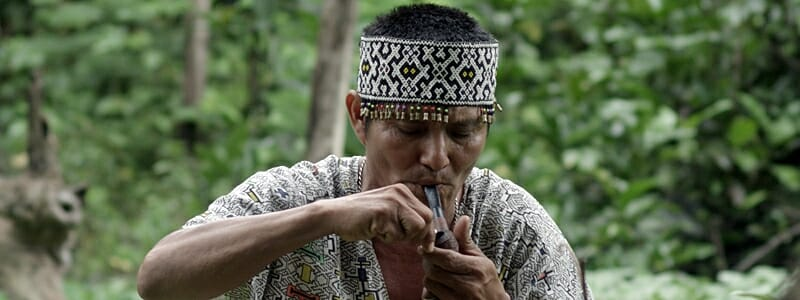 5d2d98b2b12c7002a1db37d5dfea030d - Tvůrci dokumentu o Amazonii žádají o pomoc