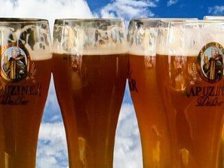 cf2e4617e24f8e03ea02342149f8e6e7 326x245 - Chmel v pivu chrání proti Alzheimerově chorobě