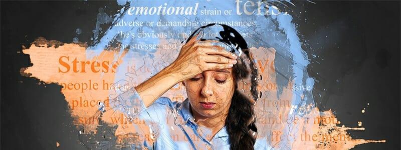 e56a58c13d21b1db436666fc4bcbf8b4 - Jak stres ničí strukturu našeho mozku