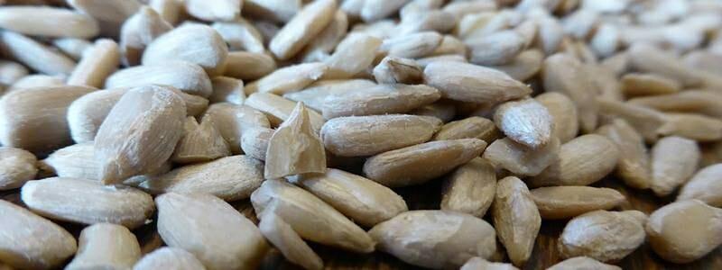 Slunečnicová semínka a jejich zdraví prospěšné účinky.