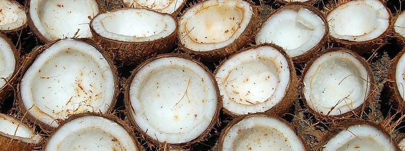b6b08a4b5a24e58e258b9130757aa162 - Rafinovaný vs. nerafinovaný kokosový olej
