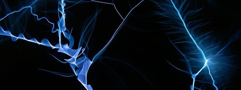 466dc5050b8a81f6e13521099322cc45 - Vědci chtějí přijít na podstatu breathariánství