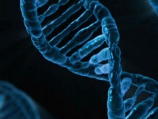 fa8c7f676a6d2a659f4844109084ddcd 326x245 - Krevní skupina Rh– a naše mimozemská DNA