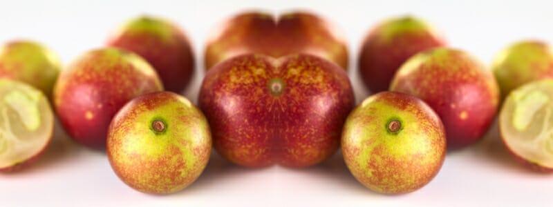 Camu camu jako nejsilnější přírodní vitamín C.