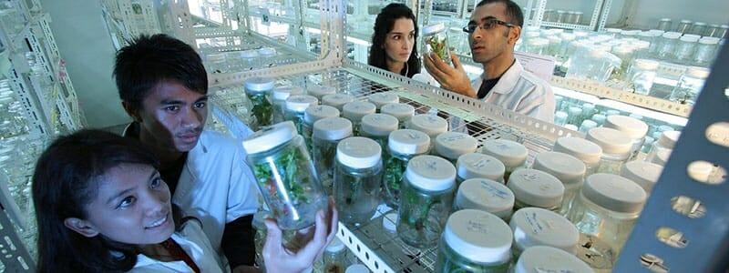 9978c8bf84083a6d4dae2cd726b2be70 - Ženy z generace mileniálů mají blíže k vědě