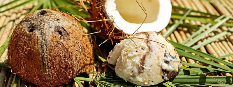 Kokosový olej účinky - prospívá pleti a léčí záněty.