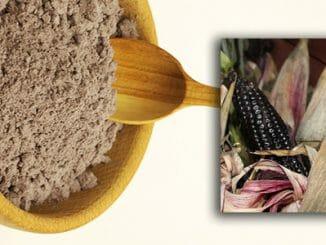 3e3a98fd4a85528336107eb240e6ca5e 326x245 - Fialová kukuřice je nabitá antioxidanty