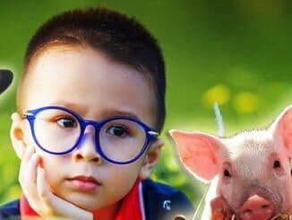 44289e3ef2009e604fc23864dbe0aec5 326x245 - Veganské stravování dětí: Ano či ne?