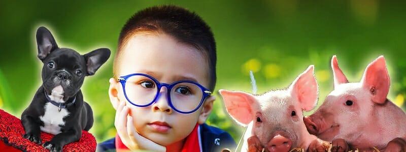 44289e3ef2009e604fc23864dbe0aec5 - Veganské stravování dětí: Ano či ne?