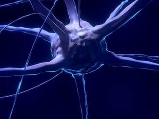 20687c23588e8c1ab2074492c017f8f3 326x245 - Jak povzbudit růst nových mozkových buněk