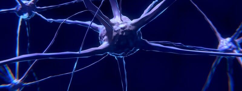 20687c23588e8c1ab2074492c017f8f3 - Jak povzbudit růst nových mozkových buněk