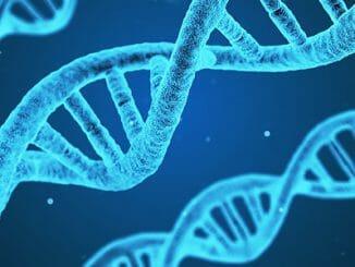 9683226671c2c8bb565b1dcb9fba2748 326x245 - Nemoc mohou spustit traumata našich předků