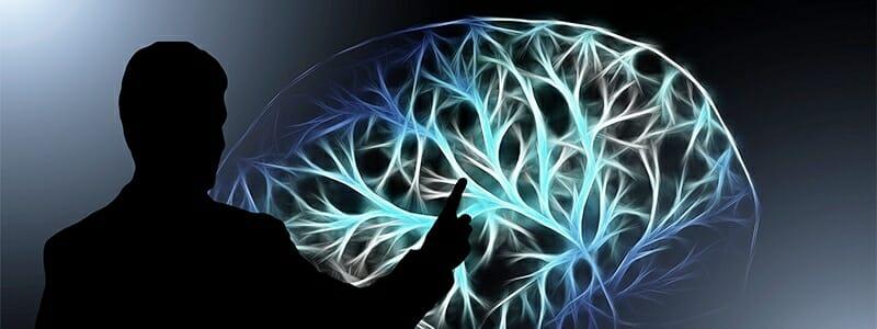 10 překvapujících zjištění o vašem mozku.