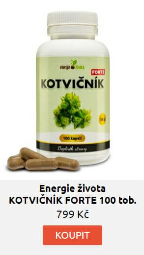 KOTVIČNÍK FORTE 100 tob. extrakt 90% saponinů