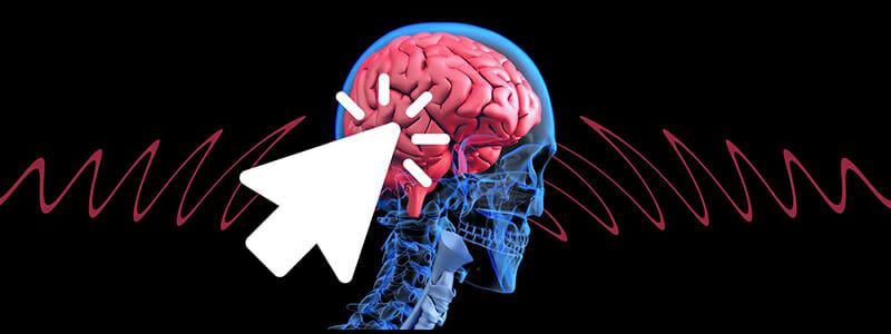 Neurogeneze aneb i starší mozek dokáže omládnout