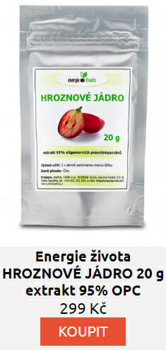 HROZNOVÉ JÁDRO 20 g extrakt 95% OPC