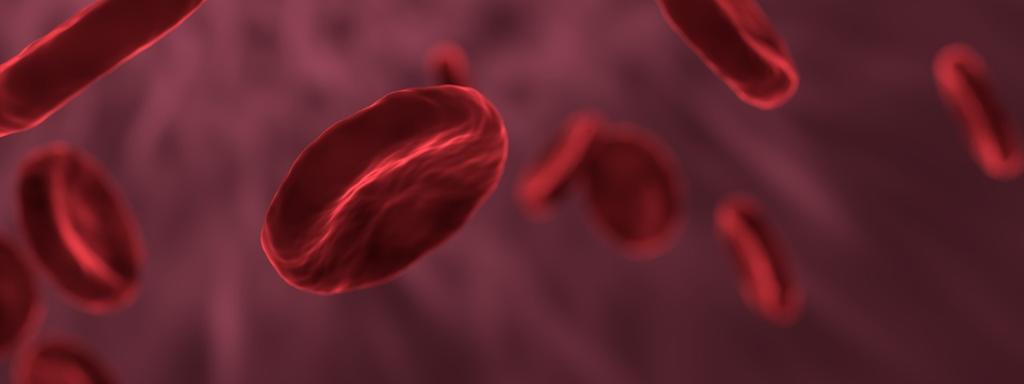 Krevní obraz