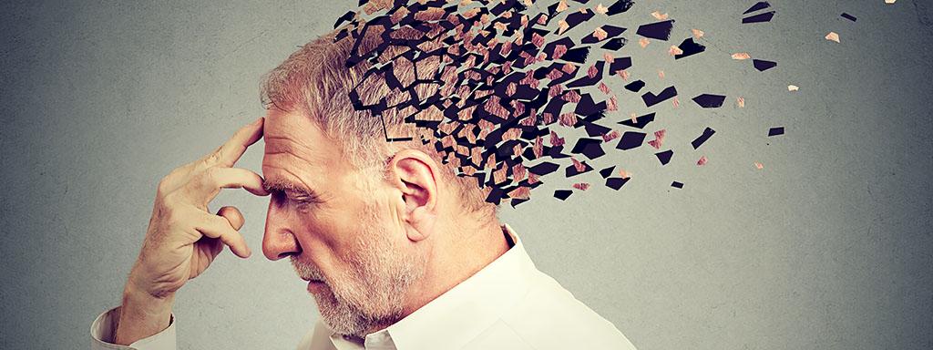 Mozek a paměť trpí nezdravým jídlem,