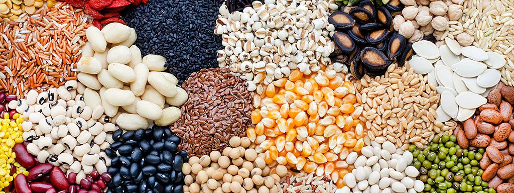 Proteiny: 17 způsobů jak je získat jinak než z masa.