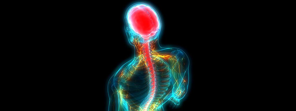 Vitamíny a minerály pro nervovou rovnováhu.