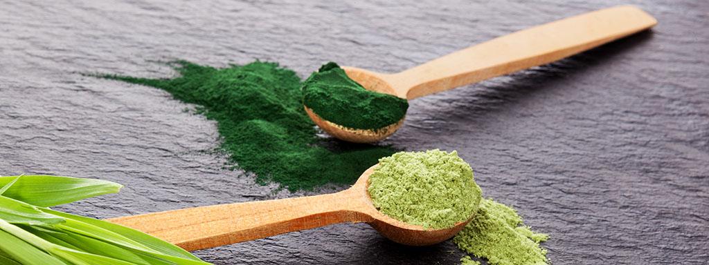 Zelené potraviny, které je třeba zařadit do jídelníčku.